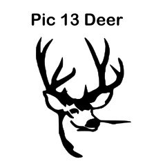 Engraving Pic 13 Deer